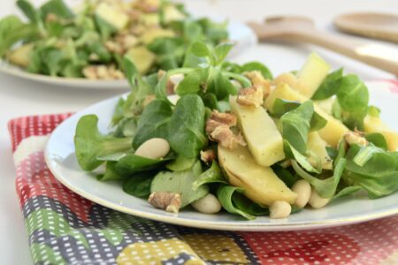 Jouw-Fabriek-Salade-Pastinaak