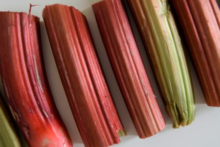 rabarber smoothie - Jouw Fabriek